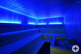 S29 Sauna, Wellness